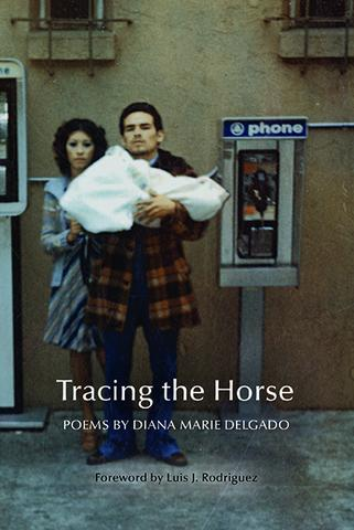 Tracing the Horse