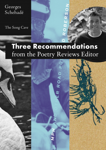 Three Recommendations from the Poetry Reviews Editor